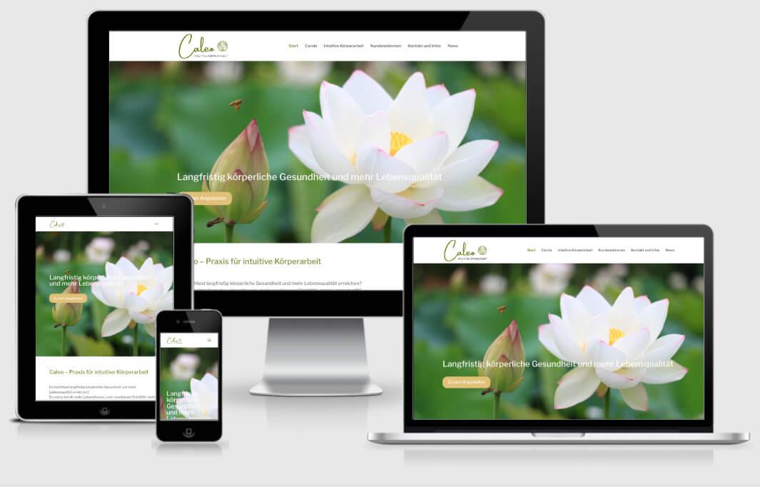 Website Caleo